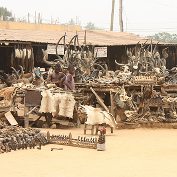 12-Akodessewa-Fetish-Market-Togo