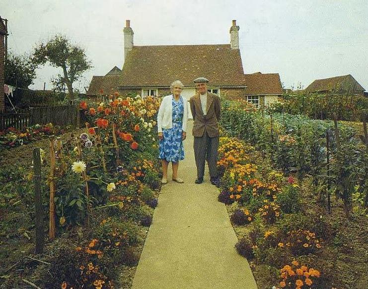 Elderly Couple Takes the Same Photo Every Season. The Last Photo Breaks My Heart.