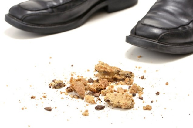 Food dropped on floor