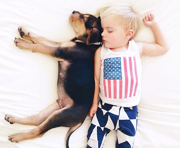 toddler-naps-with-puppy-theo-and-beau-2-5