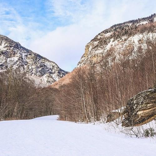 Find Momo at Stowe Mountain!