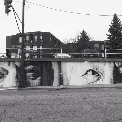 Find Momo at the eyes on Ste Anne Road.