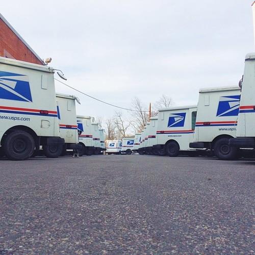 Find Momo in a postal service truck lot!