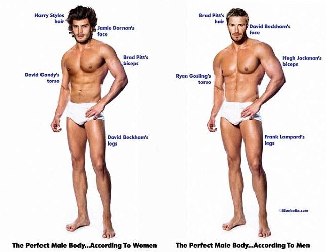 Viralscape - Perfect Male Body