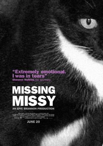 Lost Cat Poster (2)