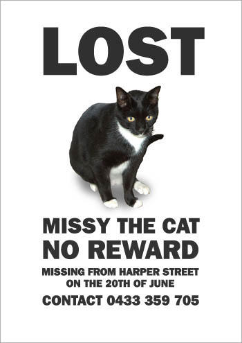 Lost Cat Poster (5)