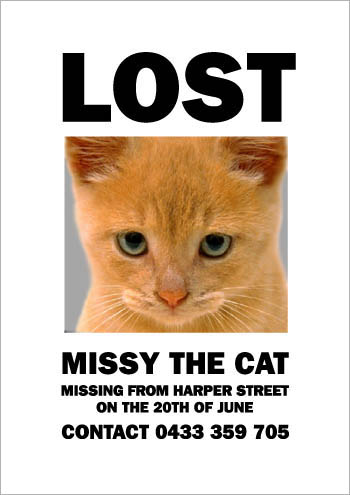 Lost Cat Poster (6)