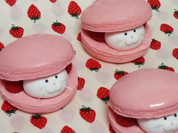 Macarons With Cat Filling