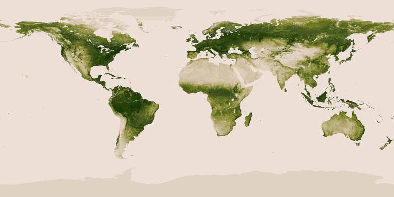 Map Of Vegetation On Earth