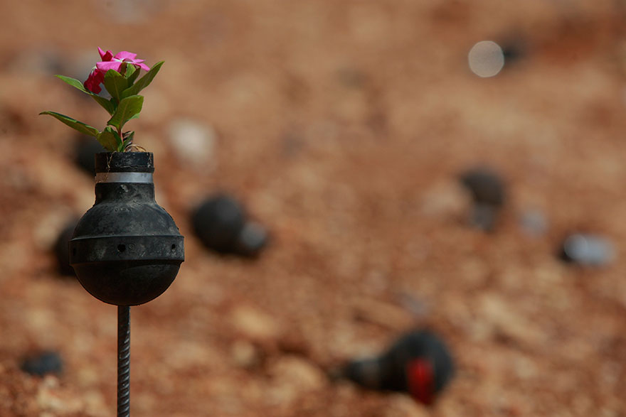 Tear Gas Flower Pots In Palestine (1)