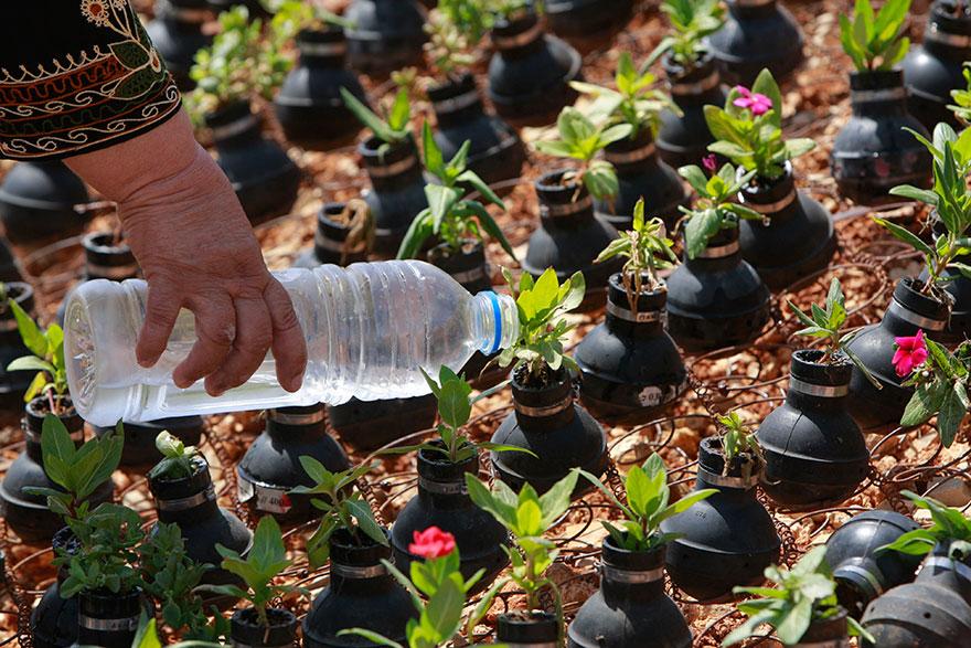 Tear Gas Flower Pots In Palestine (10)