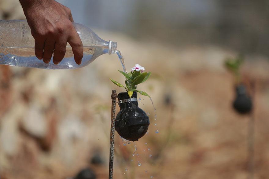Tear Gas Flower Pots In Palestine (5)