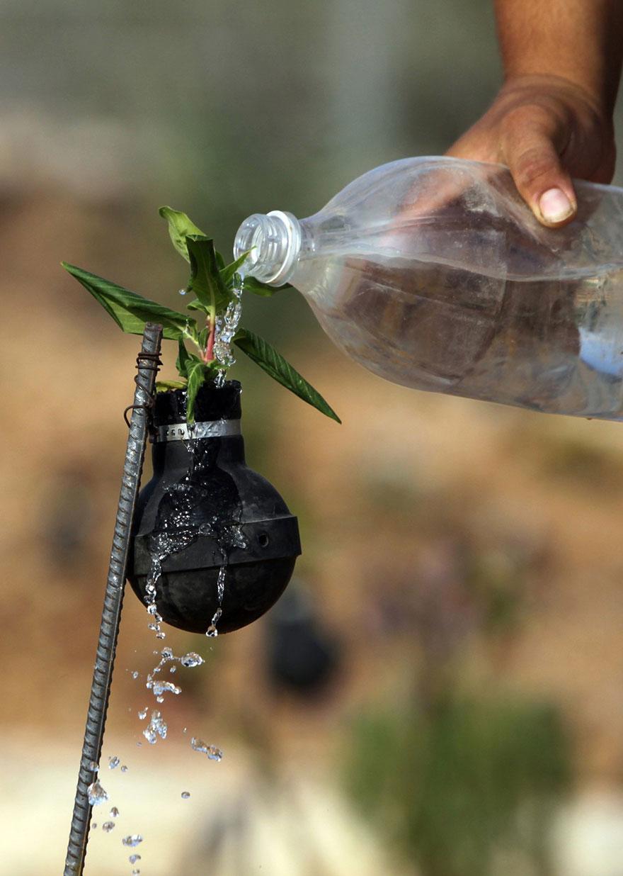 Tear Gas Flower Pots In Palestine (6)