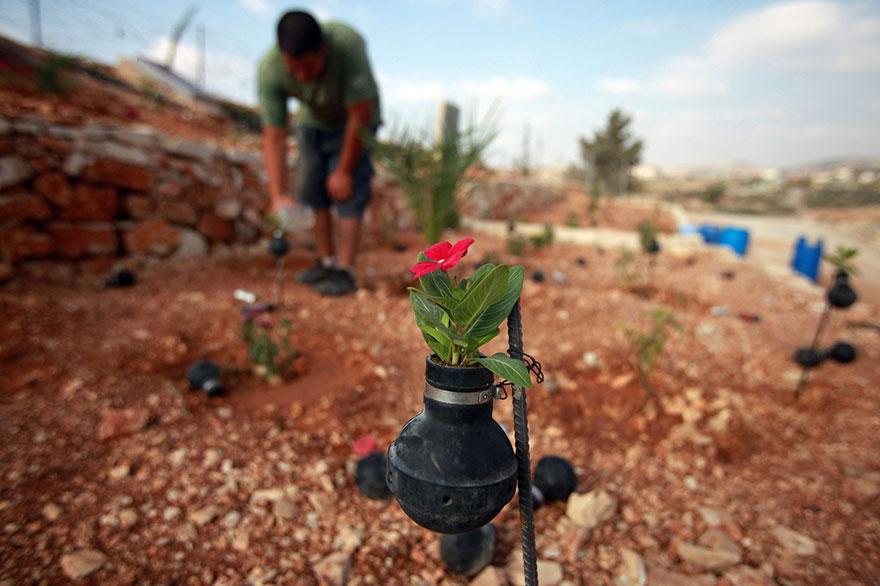 Tear Gas Flower Pots In Palestine (8)