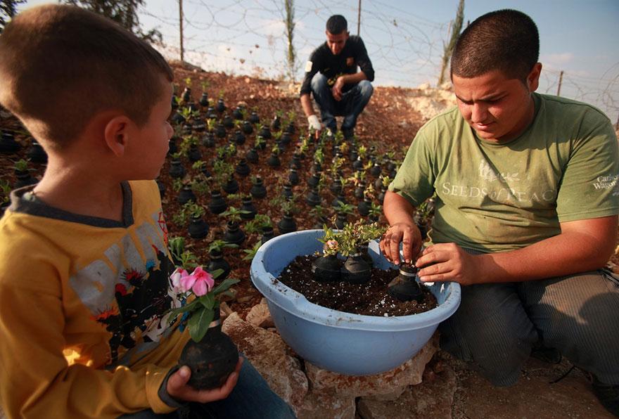 Tear Gas Flower Pots In Palestine (9)
