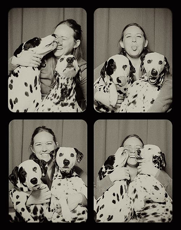 Dogs In A Photo Booth (6)