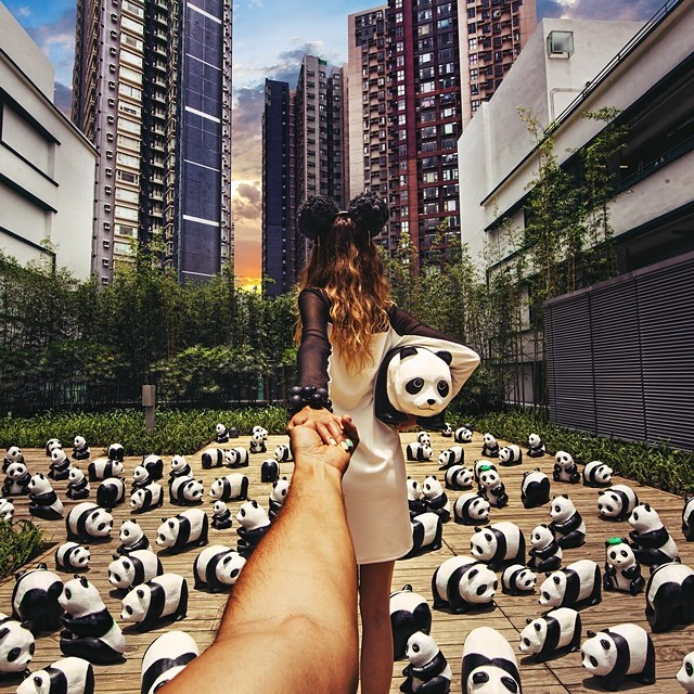 Travel to the 1600 Pandas Exhibition in Hong Kong