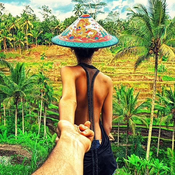 Travel to the Rice Fields in Bali