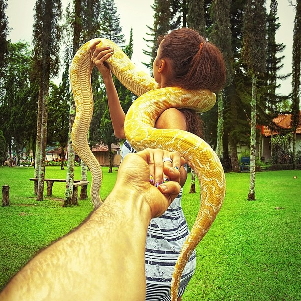 Travel to the snakes of Bali
