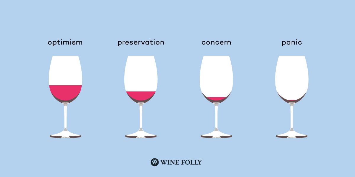 Wine Infographic (5)
