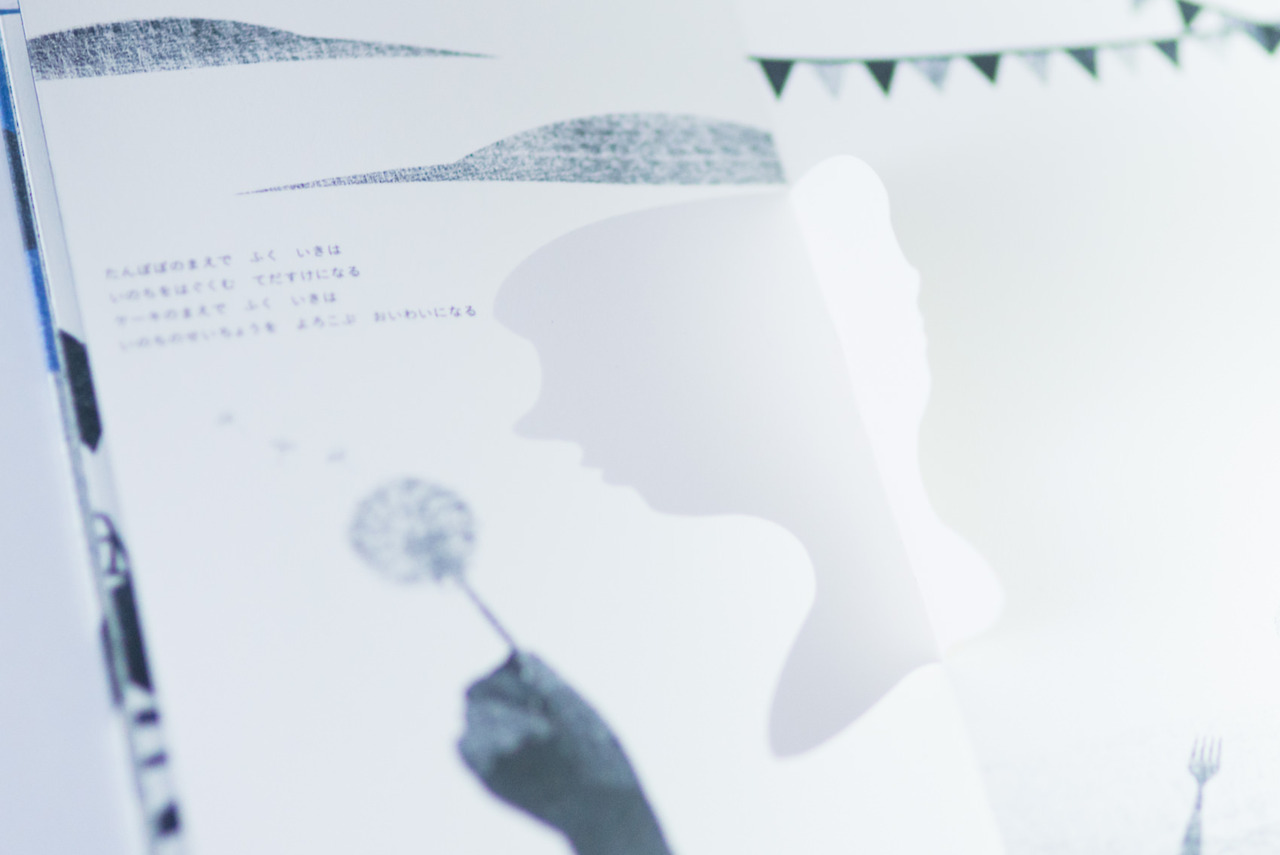 Shadow Picture Book (3)