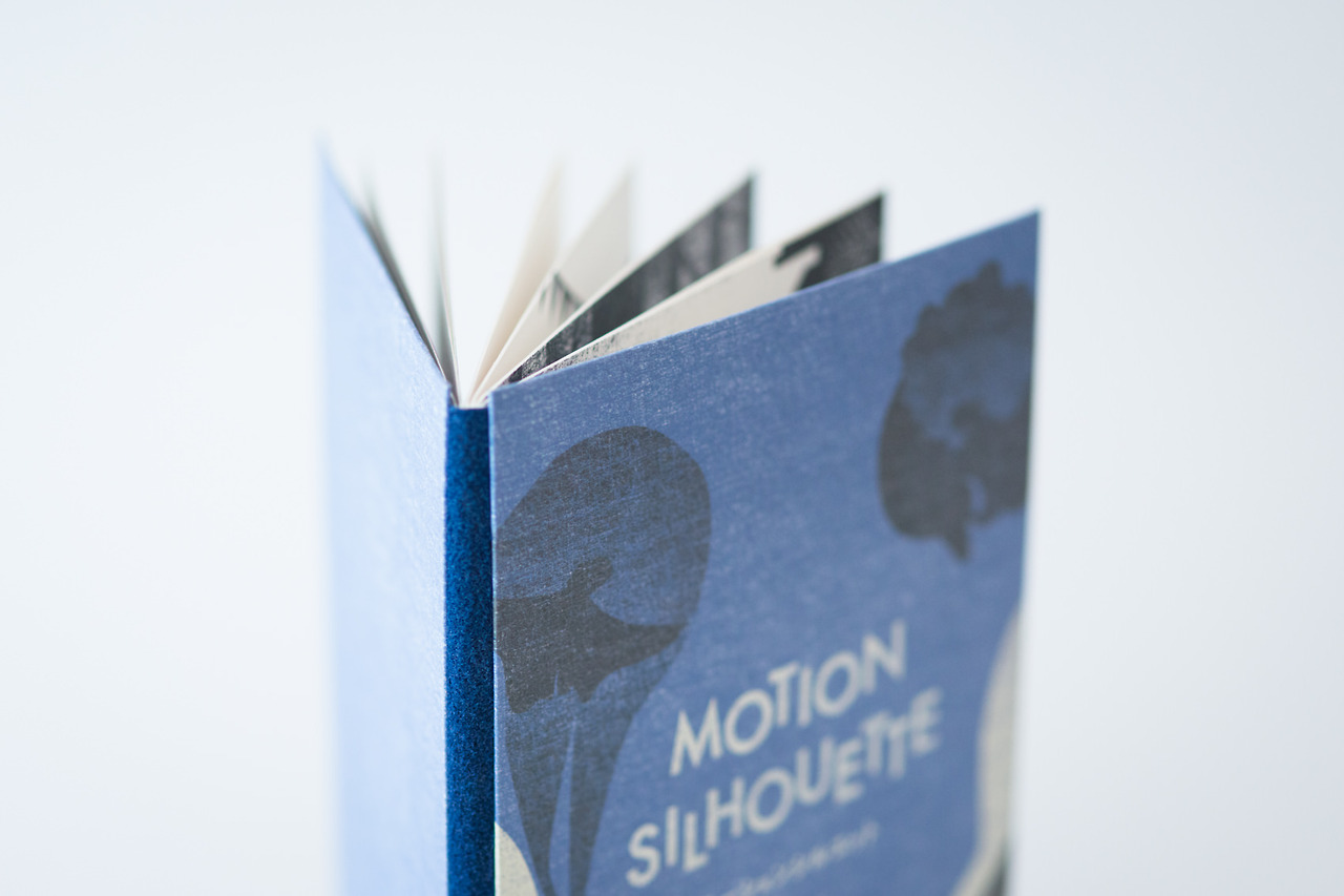 Shadow Picture Book (6)