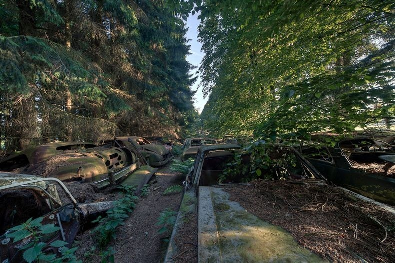 Chatillon Car Graveyard (4)