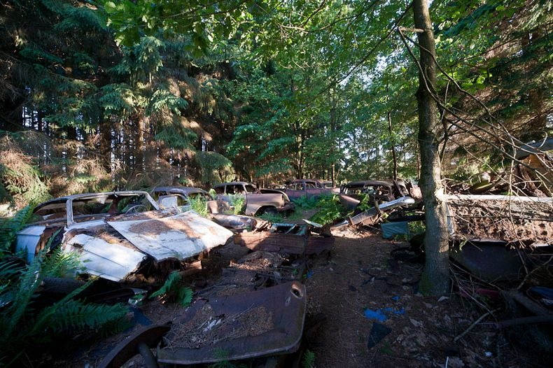 Chatillon Car Graveyard (5)