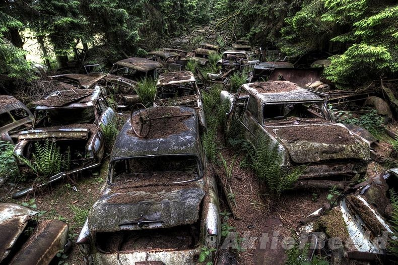 Chatillon Car Graveyard (7)