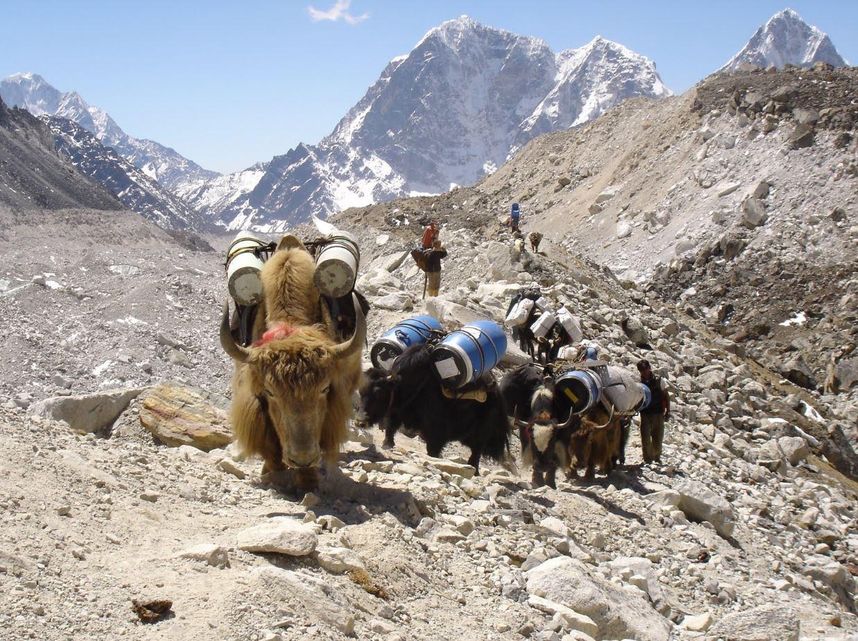 Everest Base Camp Google Street View