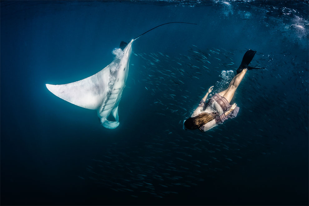 Models Swim and Pose with Whale Sharks (4)