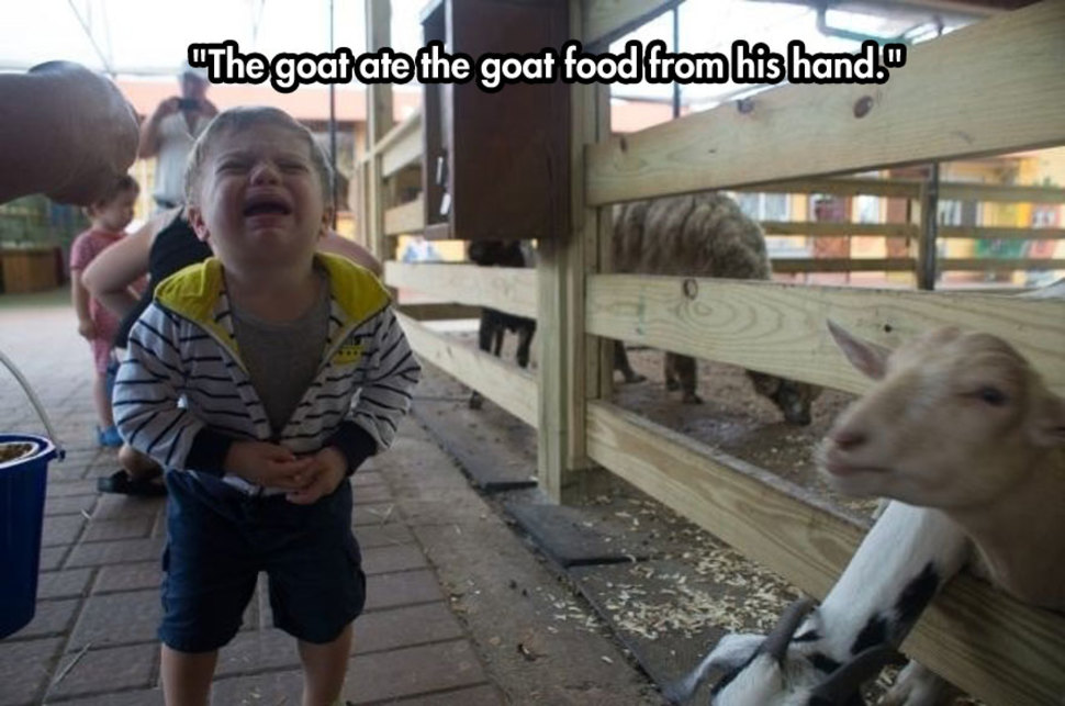 Kids Crying For Funny Reasons (11)