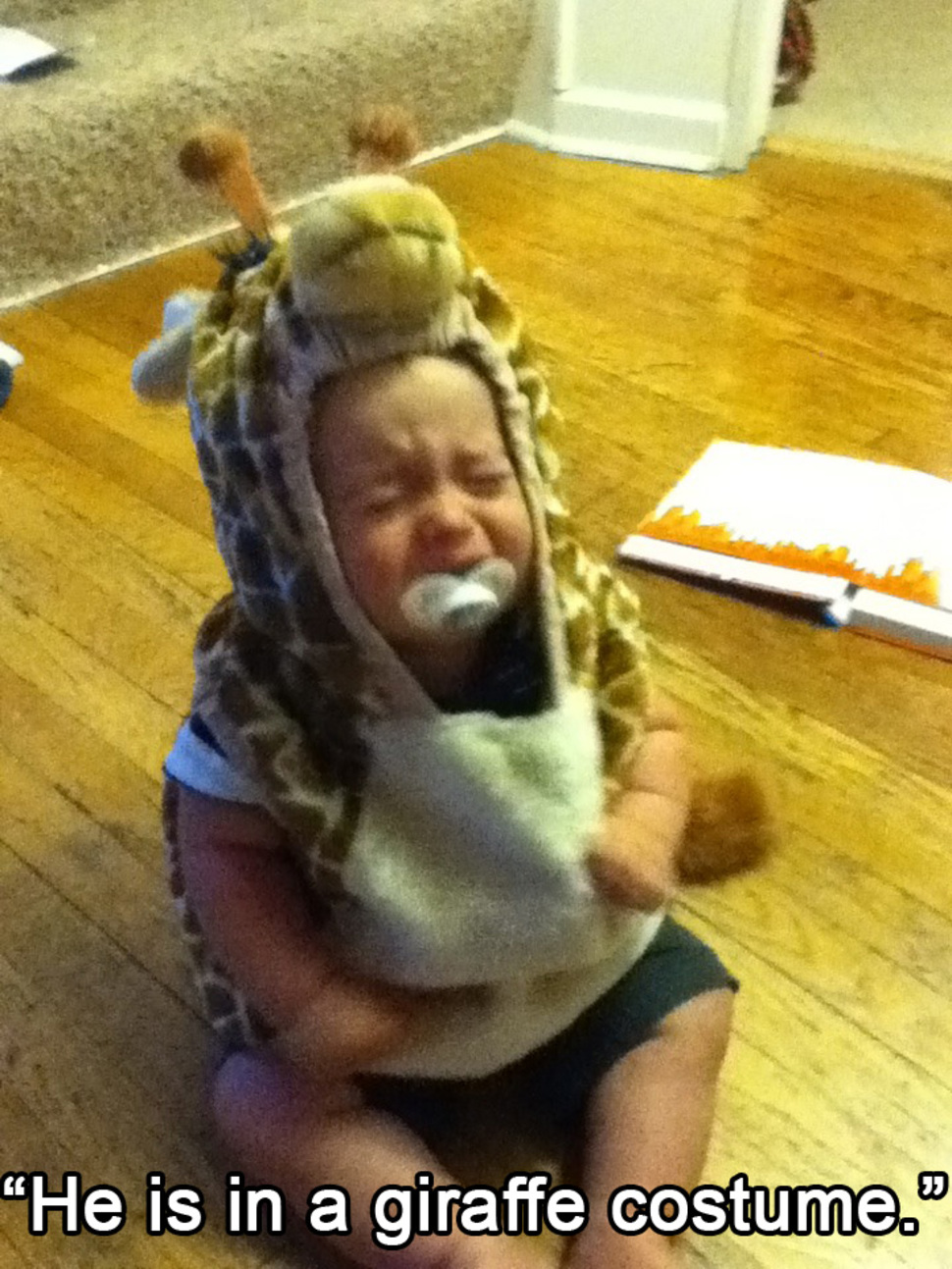Kids Crying For Funny Reasons (5)