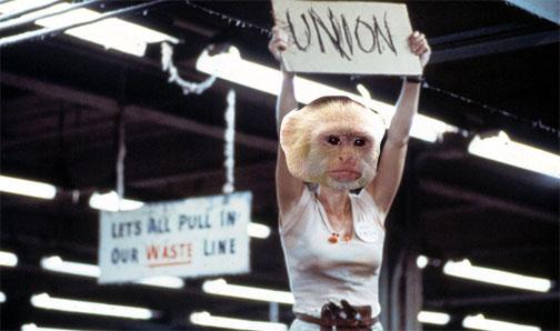 Monkey Union