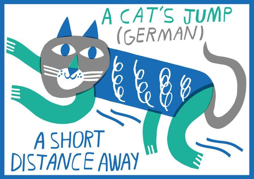 A cat's jump