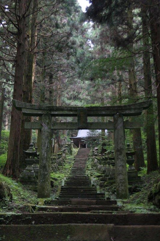 Forest Shrine in Japan (10)