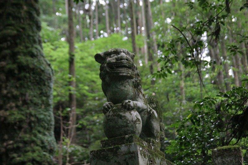 Forest Shrine in Japan (3)