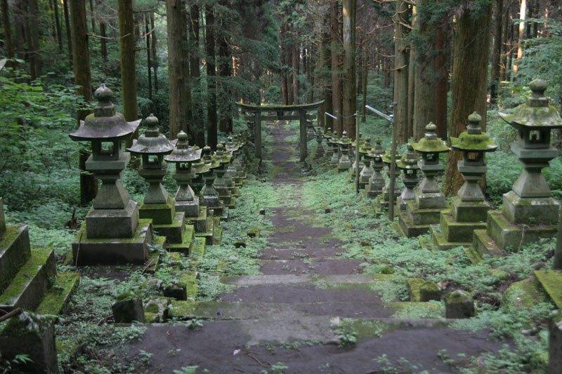 Forest Shrine in Japan (4)