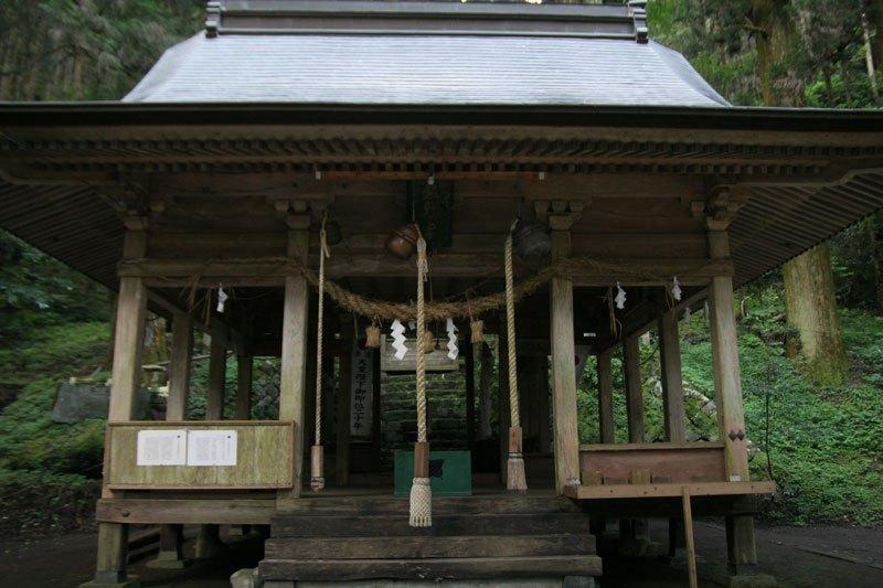 Forest Shrine in Japan (5)