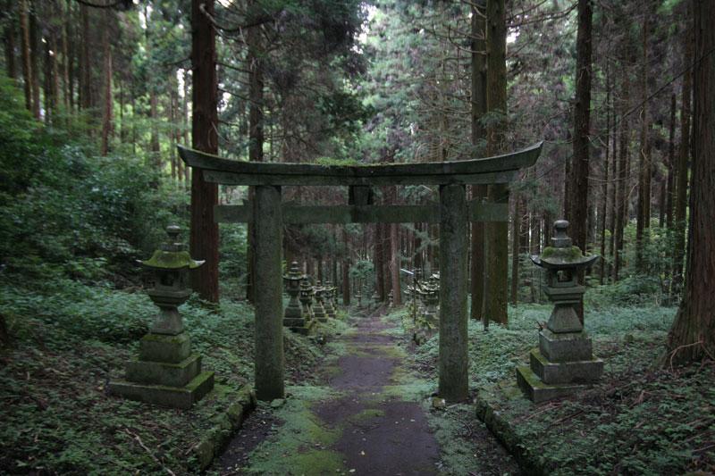 Forest Shrine in Japan (6)