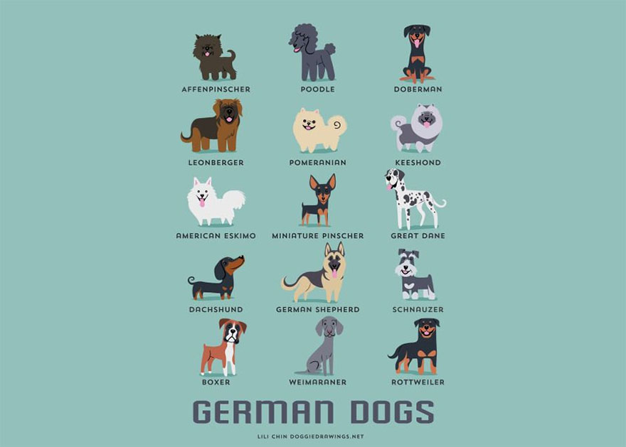German Dogs