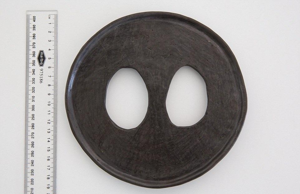 Lip disc