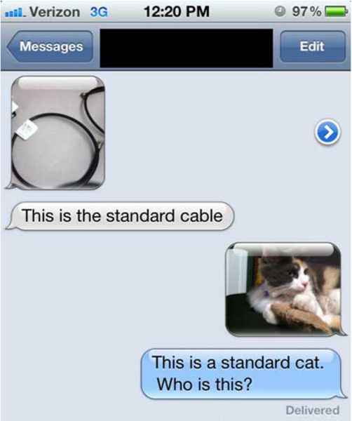 Wrong Number Texts (11)