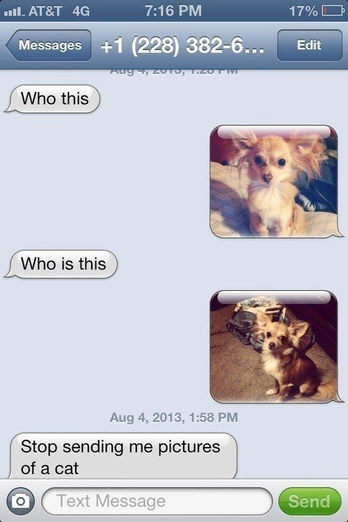 Wrong Number Texts (15)