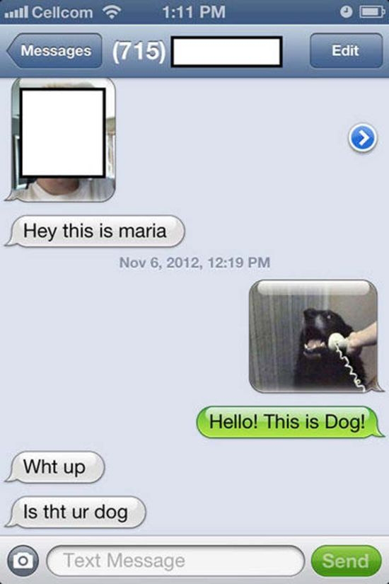 Wrong Number Texts (6)