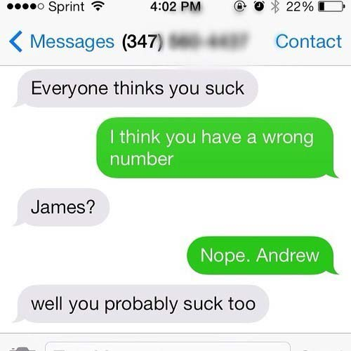 Wrong Number Texts (8)