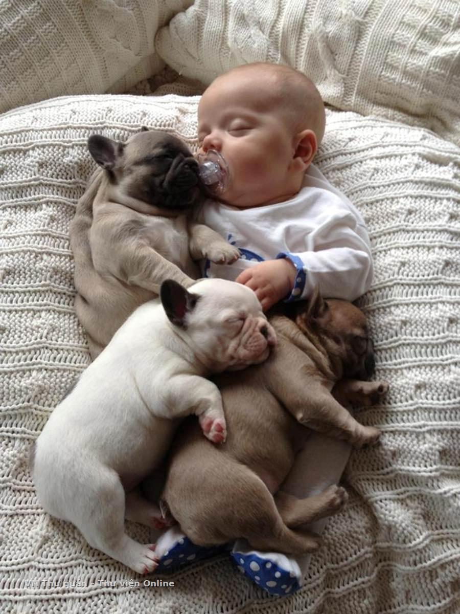 Baby Sleeping with French Bulldog (4)