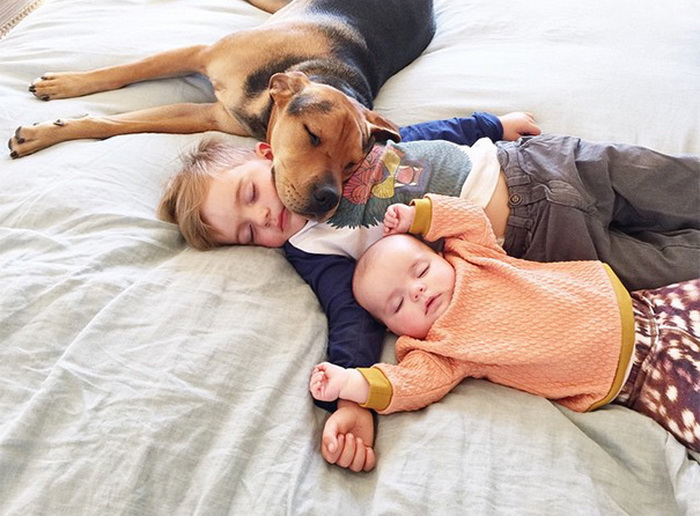 Theo, Beau And Evangeline Nap 1