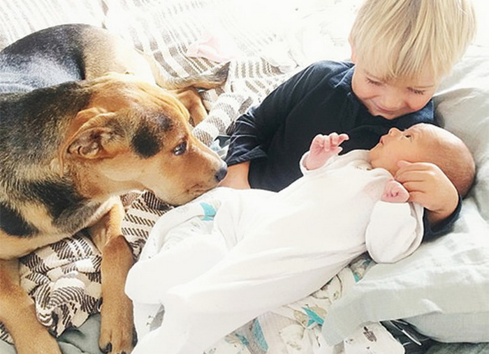 Theo, Beau And Evangeline Nap 11