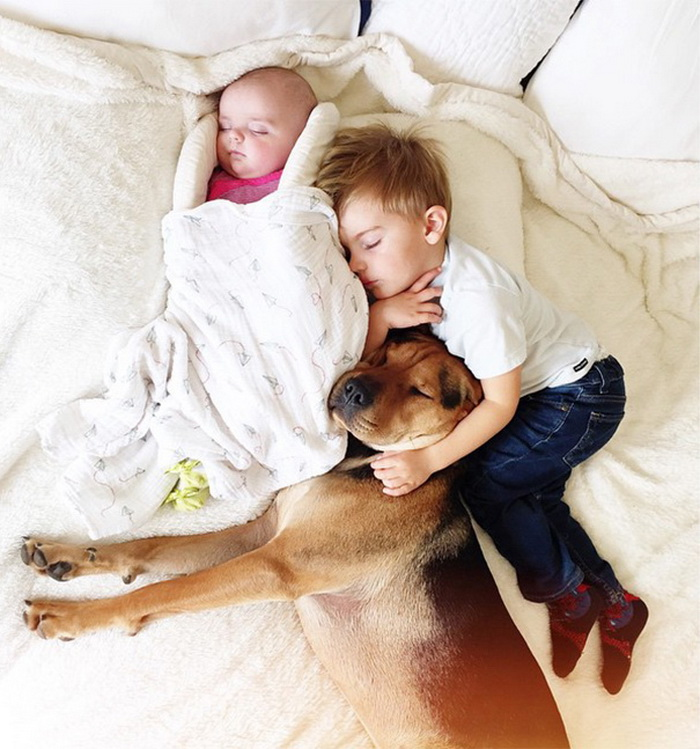 Theo, Beau And Evangeline Nap 4